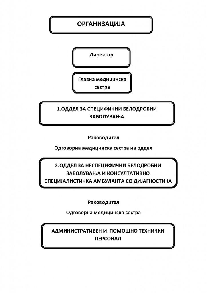 organizacija 6